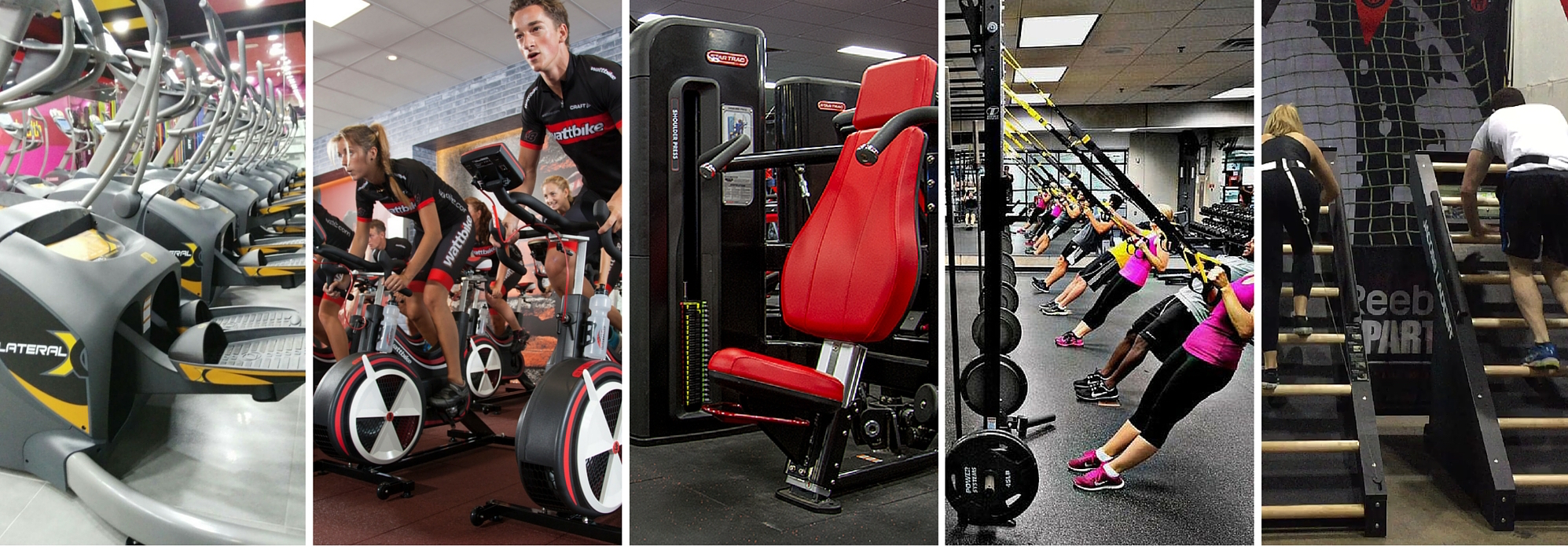 best brands in the fitness industry